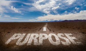 Purpose arrow